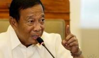 Vice President Jejomar Binay (Photoville International)