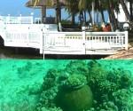Gumagawa ng artificial coral reefs ang Pacific Cebu Resort sa Cebu bilang pamalit sa mga napinsala ng dynamite fishing (UNTV News)