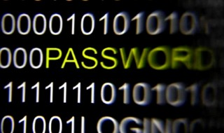 The word 'password' on a computer screen is magnified with a magnifying glass in this picture illustration taken in Berlin May 21, 2013. CREDIT: REUTERS/PAWEL KOPCZYNSKI