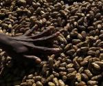 A woman arranges peanuts at the main markets in Honiara September 14, 2012. CREDIT: REUTERS/DANIEL MUNOZ