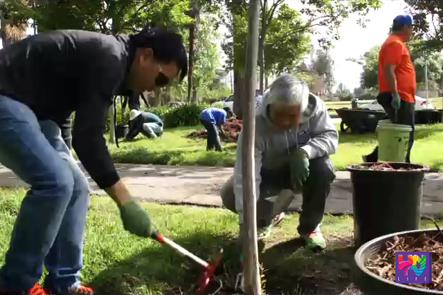 Nagbubungkal ng lupa ang mga nakilahok sa isinagawang pangangalaga sa kalikasan ng Tree People Organization sa pakikipagtulungan ng UNTV at Members Church of God Int'l sa Los Angeles, California. (UNTV News)