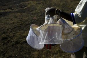 Friday, May 20, 2016 A researcher from the Uganda Virus Research Institute (UVRI) carries insect traps at the Zika Forest in Entebbe, south of Uganda's capital Kampala March 2, 2016. REUTERS/James Akena