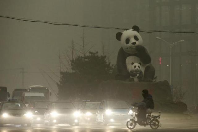 A resident rides an electric bicycle across a street amid heavy smog as vehicles wait for a traffic light next to a statue of pandas, a landmark of the Wangjing area in Beijing, China, December 1, 2015. REUTERS/CHINA DAILY