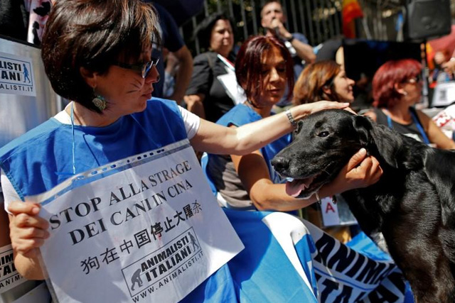 """Tuesday, June 21, 2016 Animal activists hold banners reading """"Stop to dogs' massacre in China"""" against Yulin Dog Meat Festival in front of the Chinese embassy in Rome, Italy June 21, 2016. REUTERS/Tony Gentile"""