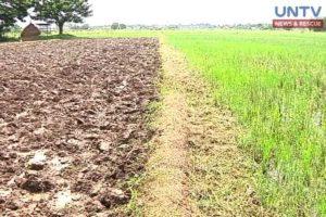 image_oct-07-2016_untv-news_dar_agri-land-conversion