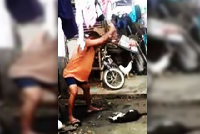 Uncle beats pet to death