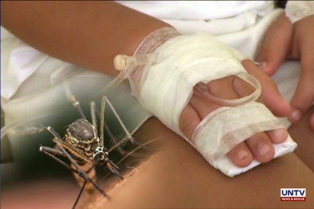 Philippine authorities declare national dengue alert after 456 deaths